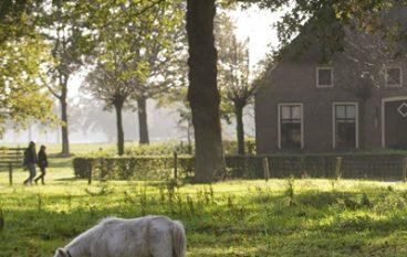 Stichting Het Drentse Landschap; Waard om mee  weg te lopen