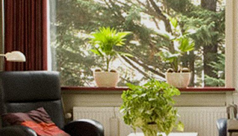 Palliatieve zorg in Hospices – de laatste fase